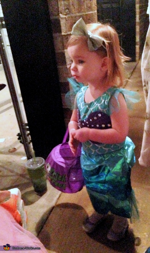 My Little Mermaid 5, The Little Mermaid Costume