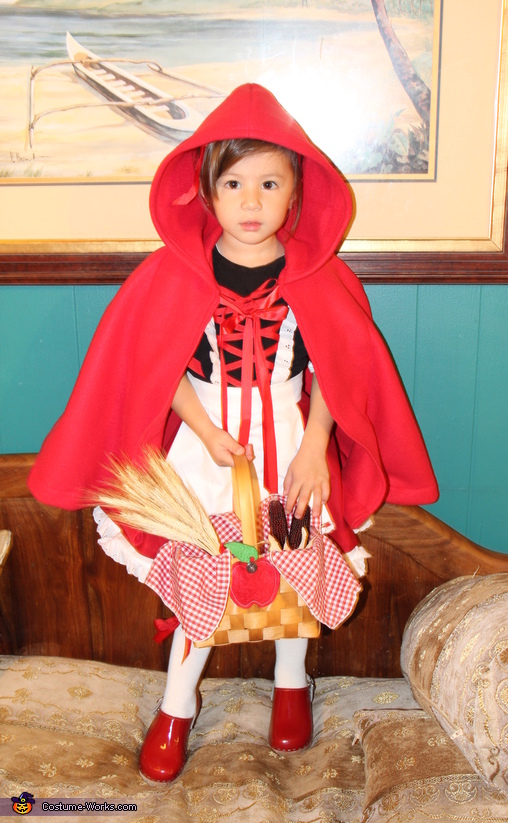 The Little Red Ridding Hood Costume Creative Diy Costumes