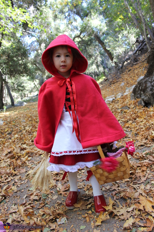 Watch out for the big bad wolf, The Little Red Ridding Hood Costume