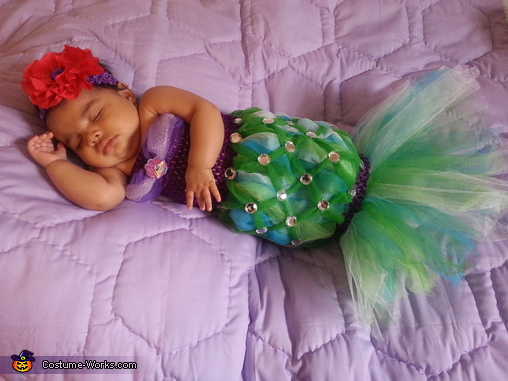 The Littlest Mermaid Costume