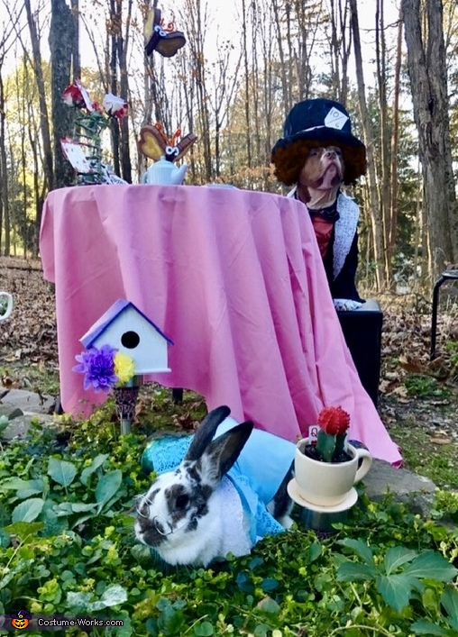 The Mad Hatter and The White Rabbit Costume