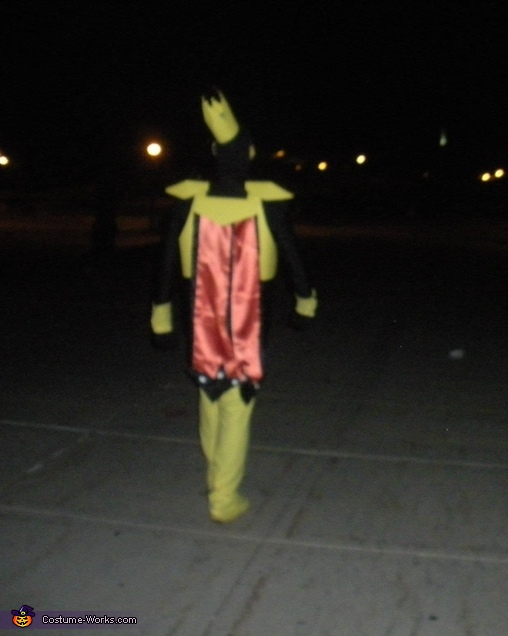 Me walking away from the camera so you can see the back, The Monarch Costume