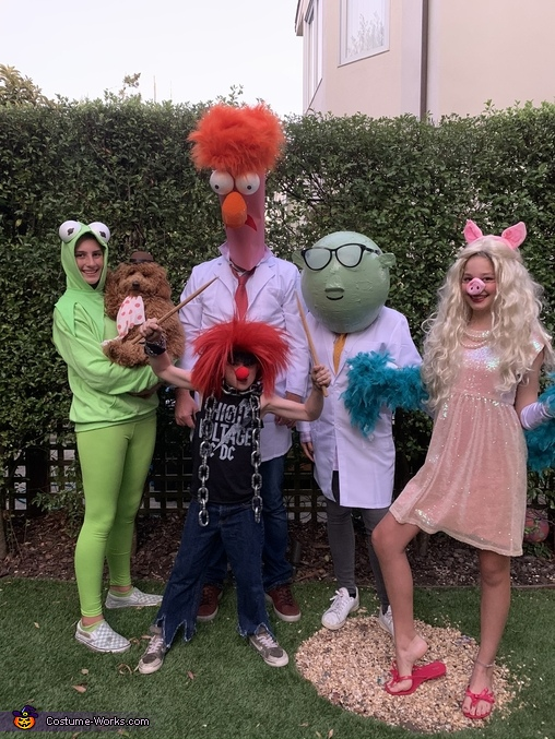 The Muppets Costume