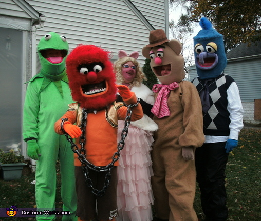 The Muppets Family Costumes