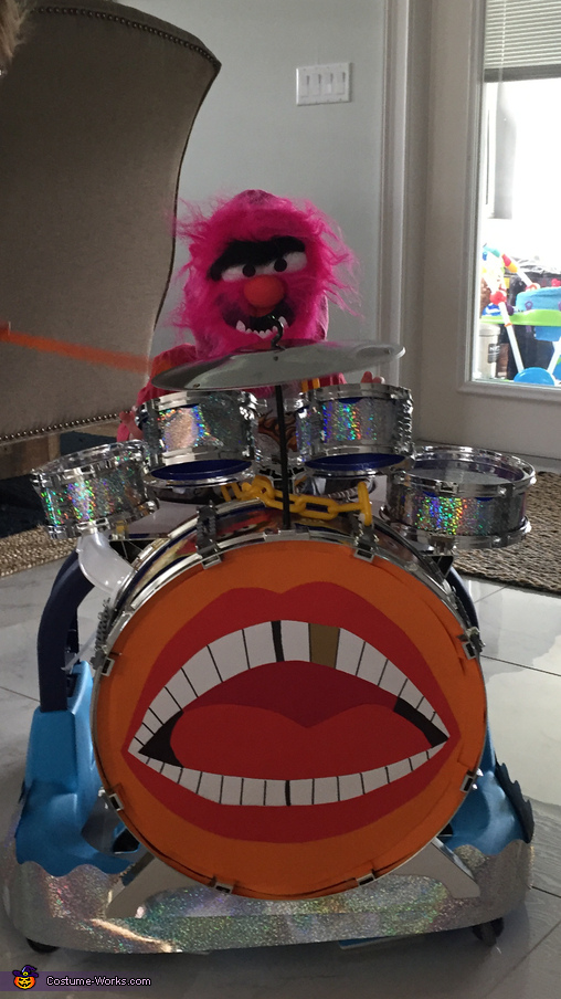 Animal plays the drums, The Muppets Costume