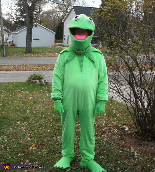 Kermit the Frog, The Muppets Family Costumes