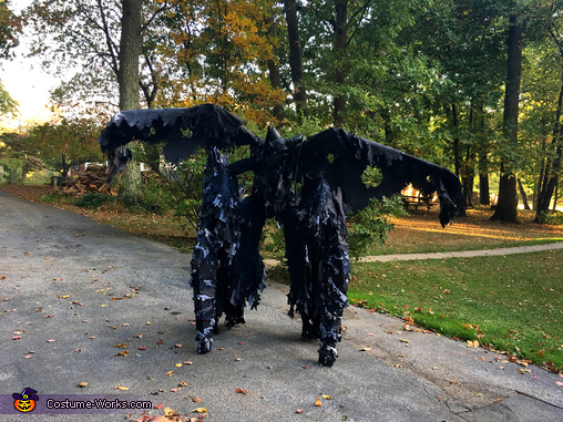 Wings View, The Night Demon Costume