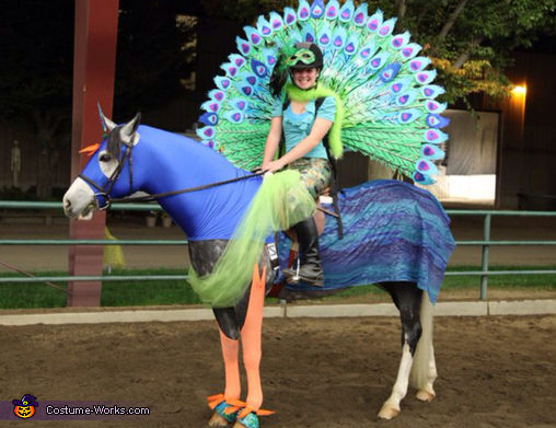 The Peacock Costume