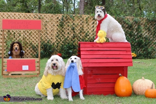 The Peanuts Crew Costume