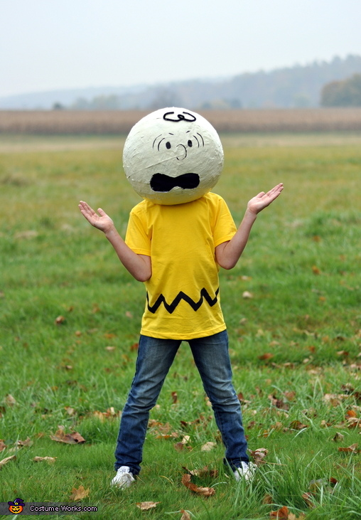 Charlie - my 9 year old, The Peanuts Gang Costume
