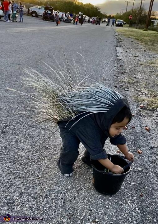 The Pokey Porcupine Costume