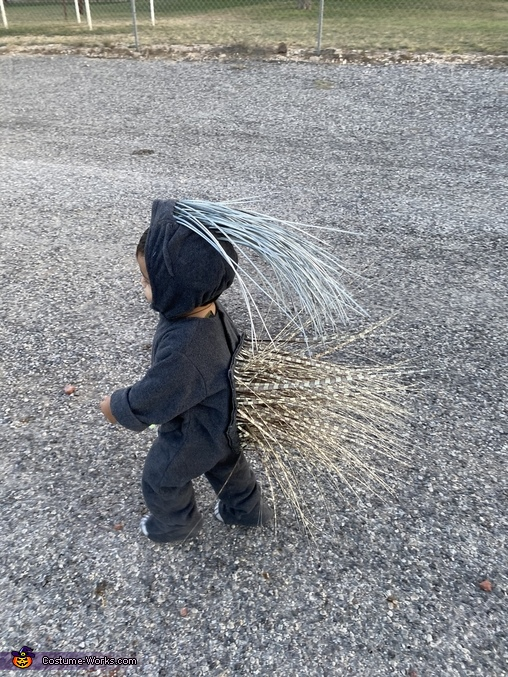 Porcupine headed to the local truck or treat!, The Pokey Porcupine Costume
