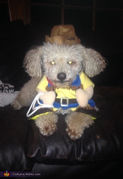 The Poodle Cowboy Costume
