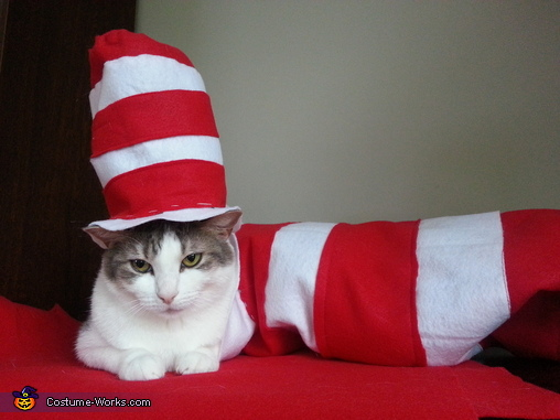 Photo #4: Pixie in the Hat, The REAL Cat in the Hat Costume