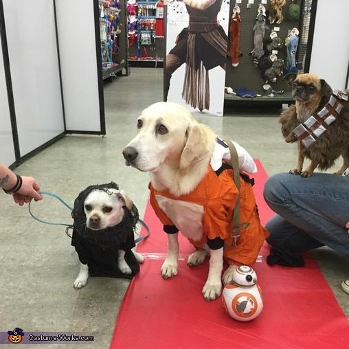 The Rebels vs Kylo Ren Homemade Costume