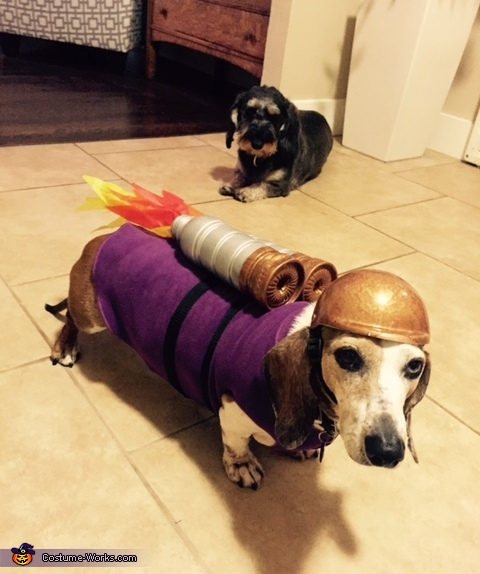 The Rocket Dog Costume
