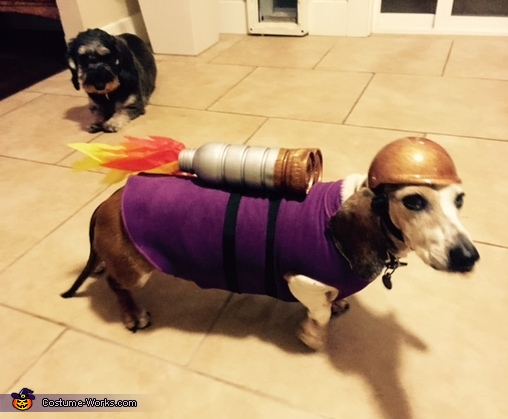 The Rocket Dog Homemade Costume