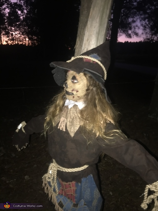 The Scarecrow Homemade Costume