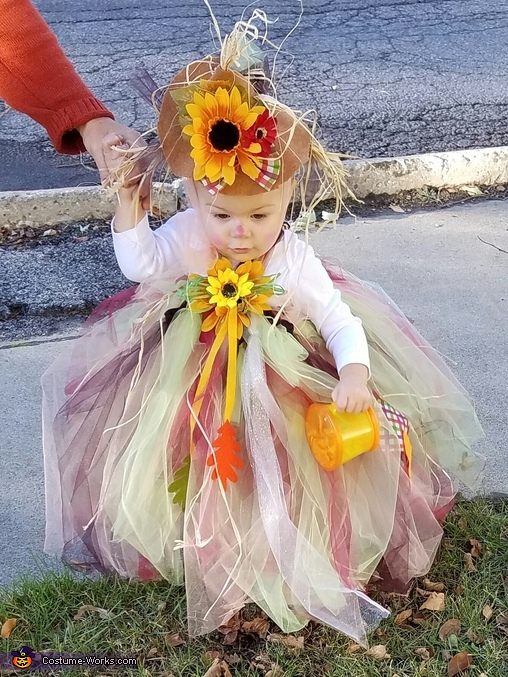 The Scarecrow Princess Costume