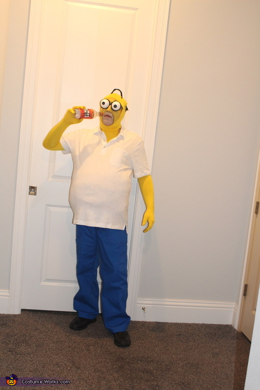 Homer, The Simpsons Costume