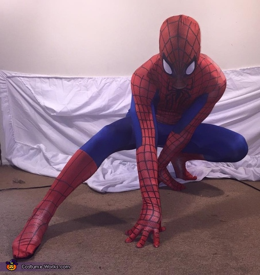 The Spectacular Spider-Man Costume