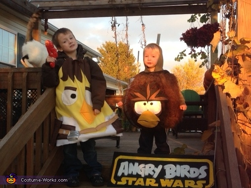 The Star Wars Angry Birds Family Homemade Costume