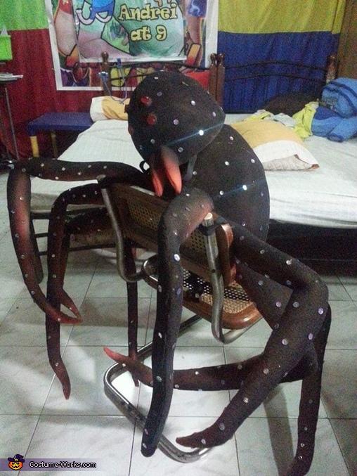 The Tarantula Homemade Costume