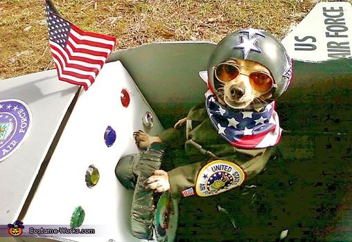 United States Fighter Pilot Costume