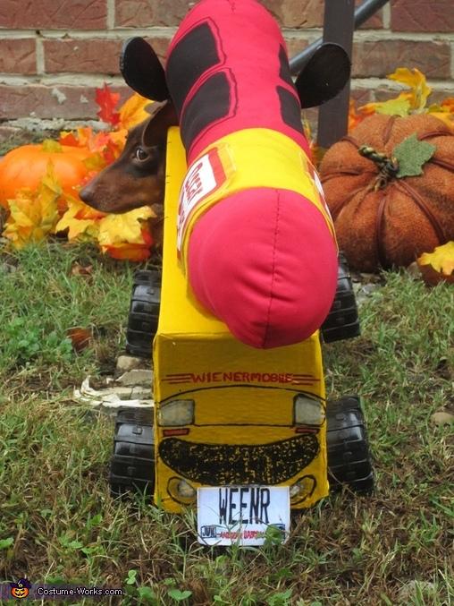 The Wienermobile Dog Costume