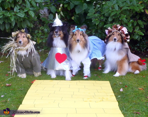 Wizard of Oz Dog Costumes