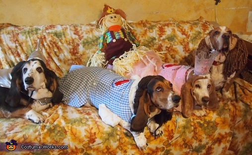 The Wizard of Oz Dogs Costume