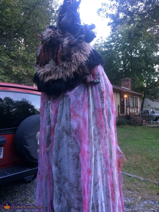 The back of Thr Wizzard, The Wizzard Costume