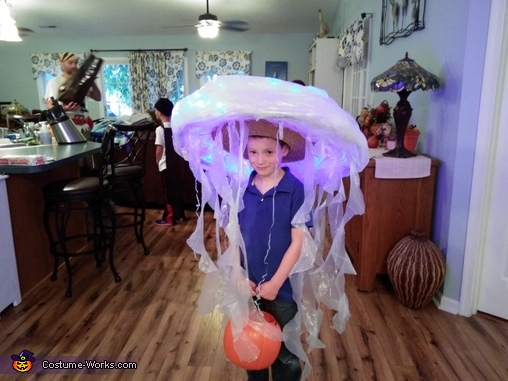 The Jellyfish, The Wonders of the Deep Blue Sea Costume