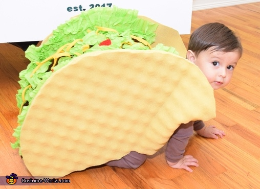 The World Famous 23 lb Super Taco Costume