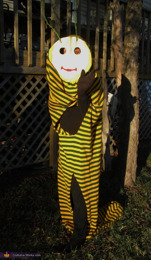 The Worm can walk!, The Worm Costume