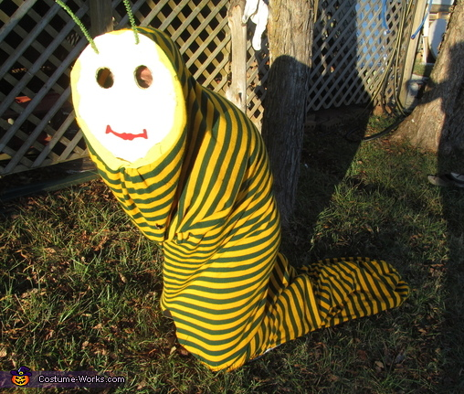 The Worm Costume