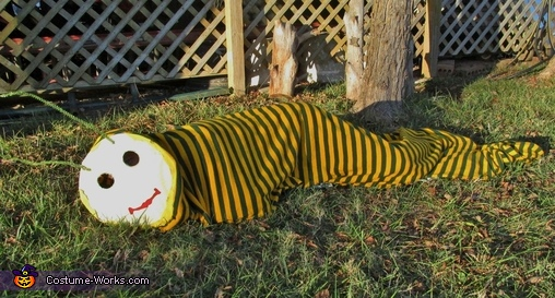 The Worm laying down, The Worm Costume