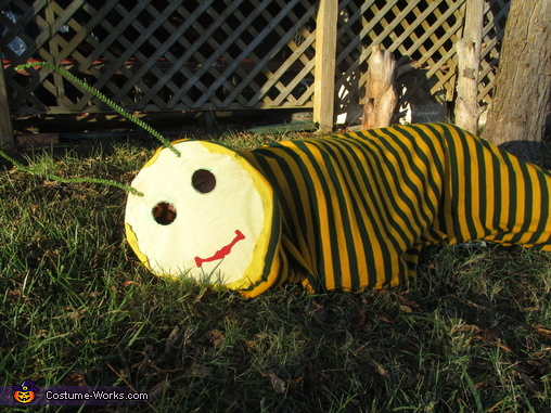 The Worm, The Worm Costume