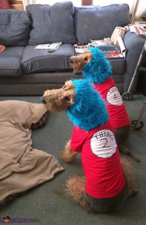 Thing 1 and Thing 2 Dogs Costume