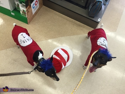 Thing 1 and Thing 2, Thing 1 and Thing 2 Dog Costumes