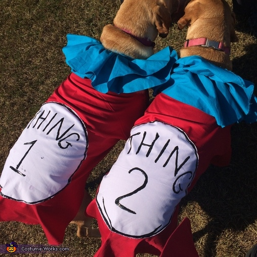 Thing 1 & 2, Thing 1 & 2 Dogs Costume