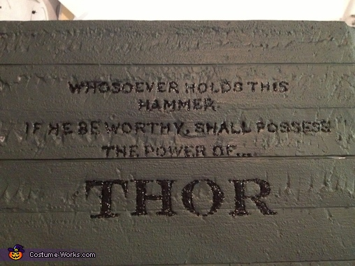 Thor Homemade Costume