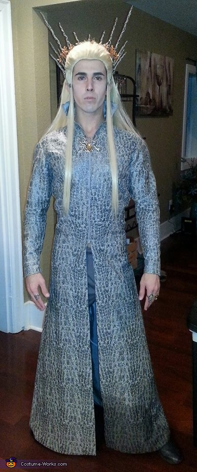 Thranduil, King of Mirkwood Costume