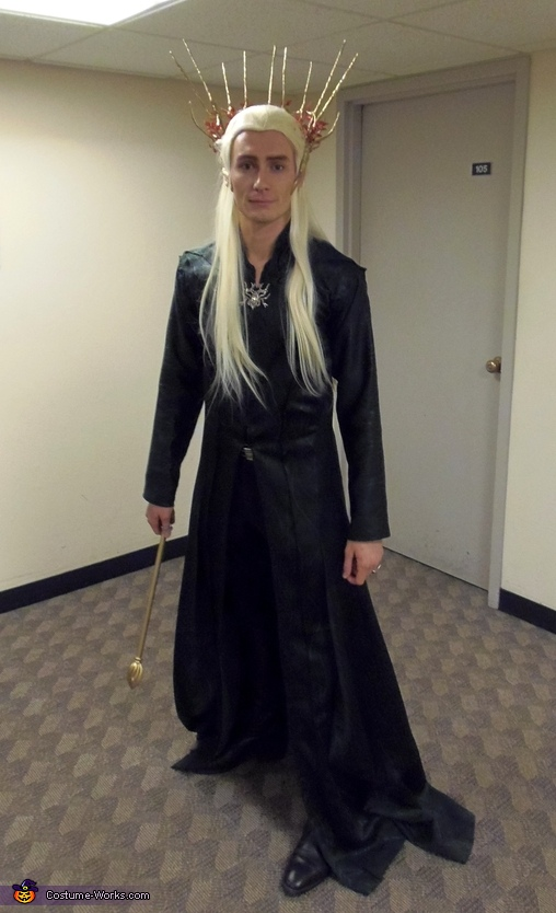 Thranduil the Elvenking Costume