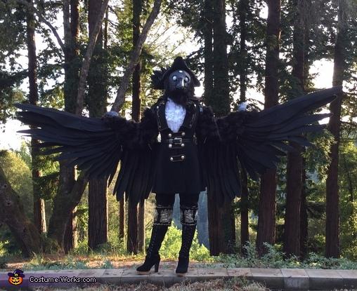 Three-Eyed Raven Costume
