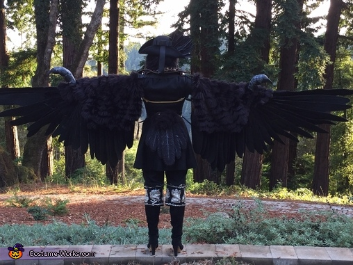 Back of wings, tailfeathers, Three-Eyed Raven Costume