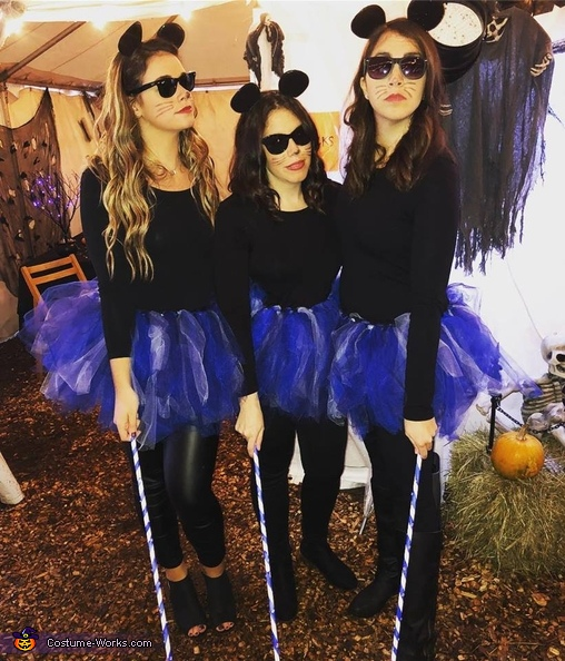 Three Blind Mice Costume