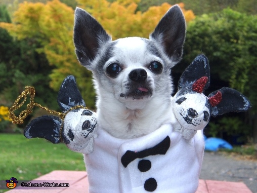 Three Headed Chihuahua Costume