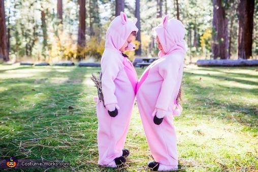 Mini piggies, Three Little Pigs and the Big Bad Wolf Costume