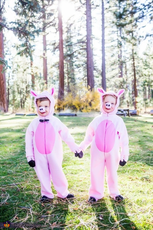 Twin love, Three Little Pigs and the Big Bad Wolf Costume
